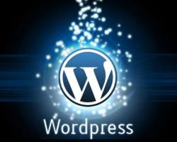 Four Reasons Why WordPress Is The Best CMS Platform On The Internet