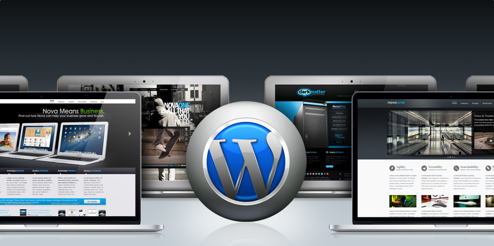 Tips for WordPress Theme Developers