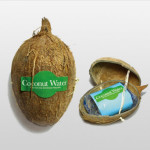 Coconut-water-packagin-1