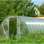 green house ideas 2