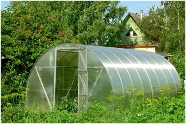 Quirky ideas for a diy greenhouse designer mag for Green ideas for houses