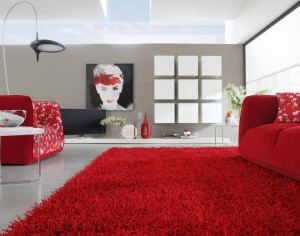 17+ Modern Rugs Ideas to Rejuvenate the Home Interior