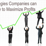 Strategies Companies can Employ to Maximize Profits