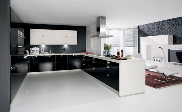 kitchen cabinet designs 7