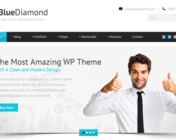 5 Attributes of WordPress Business Themes for Your Business Website