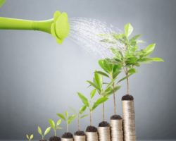 Keep Your Organization Growing With These Business Tips