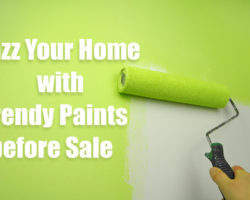 Jazz Your Home with Trendy Paints before Sale