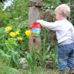 ideas for child friendly garden